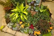 2013_Arkansas_Flower_and_Garden_Show_04_2
