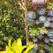2013_Arkansas_Flower_and_Garden_Show_06_3
