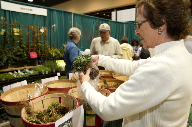 2013_Arkansas_Flower_and_Garden_Show_10_15