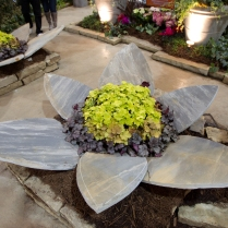 2013_Arkansas_Flower_and_Garden_Show_11_6