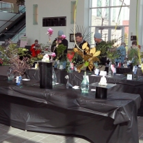 2013_Arkansas_Flower_and_Garden_Show_24_68