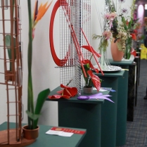 2013_Arkansas_Flower_and_Garden_Show_37_56