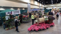 2013_Arkansas_Flower_and_Garden_Show_42_52