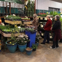 2013_Arkansas_Flower_and_Garden_Show_45_49