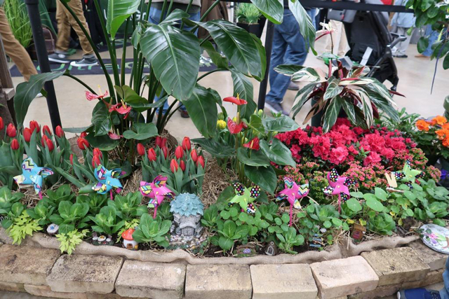 Picture of a show garden